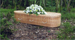 A coffin in a wood
